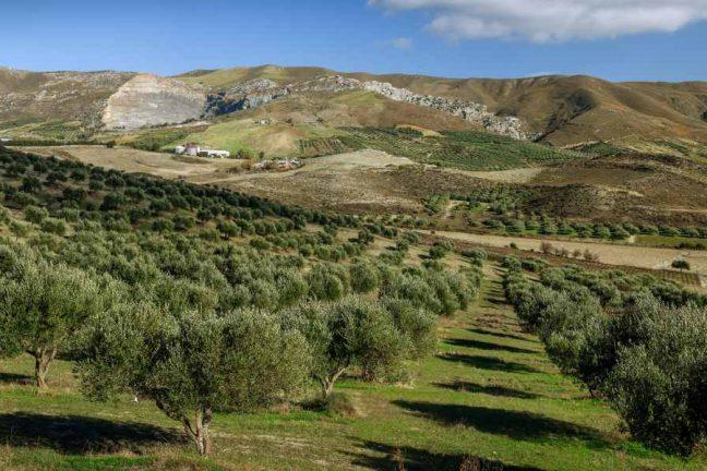 Mountain panorama in Greece